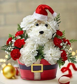 Save 25%Flowers and Gifts Via Visa Checkout @ 1-800-Flowers