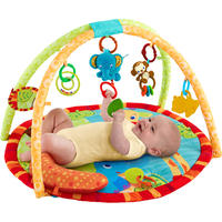 $19Bright Stars Safari Tales Activity Gym
