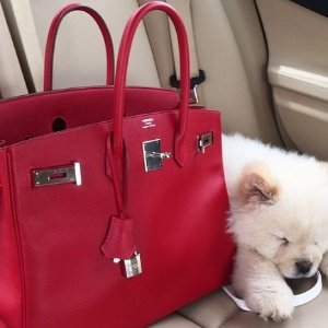 From $550Second-handed Hermes Handbags & Wallet @ Saks Off 5th