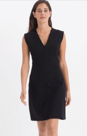 $70The Sleeveless V-Neck Flare Dress @ Everlane