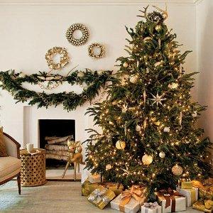 低至$39Groupon 精选圣诞树特卖 尺寸齐全